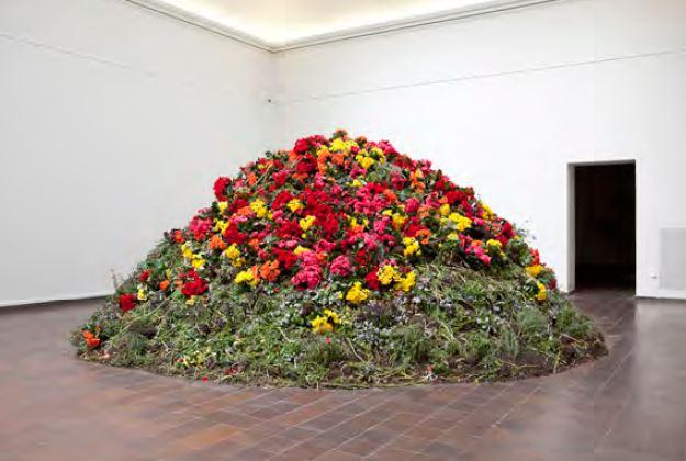 Installationsbilder från verket Transition på Göteborgs Konsthalls utställning Naturrum, 2014.