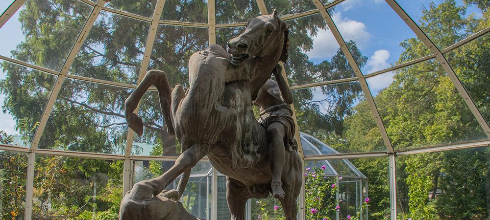 Häst attackerad av panter